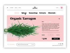 Web Design: Big Guide into Different Types of Websites Landing Page Inspiration, Ui Inspiration, Design Ios, Graphic Design, Desktop Design, Kiosk Design, Types Of Websites, Visual Hierarchy, Ui Web
