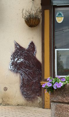 Cat Street Art, Montry by C215 - Christian Guemy
