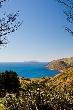West Wind Makara Wellington