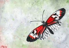 Original watercolor of a black, red and white butterfly (unframed) - by Savousepate