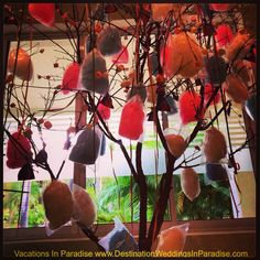 Marshmallow candy tree for your #vacationsinparadise #destinationwedding @Destination Weddings In Paradise