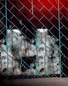 Vijay Mahar New Editing Background - CB Editz - CB Background Stock Dslr Blur Background, Blur Background Photography, Desktop Background Pictures, Light Background Images, Studio Background Images, Picsart Background, Background Images For Editing, Photo Background Editor, Hd Background Download