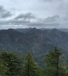 Rogue River-Siskiyou National Forest #keepitwild #rewildyourmind #wilderness by ghost_rogue
