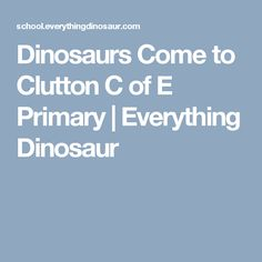 Dinosaurs Come to Clutton C of E Primary | Everything Dinosaur
