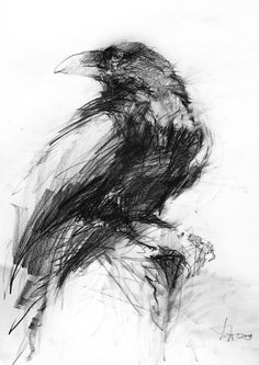 Crows Drawing, Bird Drawings, Animal Sketches, Art Sketches, Owl Wallpaper Iphone, Pencil Shading Techniques, Naruto Drawings, Raven Art, Charcoal Art