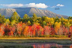 Along the Golden Road in Millinocket, Maine on October 3, 2013.