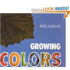 great book to talk about veggies and colors