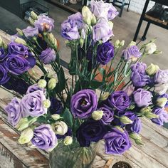purple roses and violet carnations