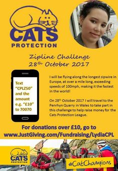 Hi, my name is Lydia and I am going to be doing a sponsored Zipline to raise money for The Cats Protection League. Please help me help this great organisation!   www.JustGiving.com/Fundraising/LydiaCPL #cats #love #instagood #photooftheday #beautiful #cute #happy #fashion #followme #me #follow