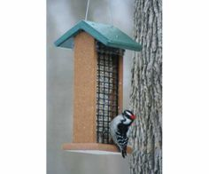 Bird Feeder Feeds 2 suet cakes Recycled Poly 3 in 1 Feeder