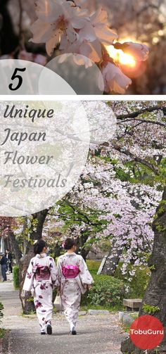 Japan Flower Festival: 5 unique festivals to see New Travel, Asia Travel, Travel Style, Travel List, Japan With Kids, Japan Flower, Japan Spring, Japan Travel Guide, Travel Guides