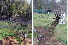 Eco sculpture made from trees. Incredible!!!