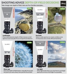 Digital Camera World - A layman's guide to depth of field: how to check and affect sharpness like a pro Photography Cheat Sheets, Photography Basics, Photography Lessons, Photography For Beginners, Photography Camera, Photoshop Photography, Photography Tutorials, Digital Photography, Landscape Photography