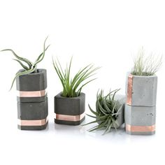Youll get form, function and versatility with these three small concrete copper cups. Organize your little bits and bobs or feature them as a spacious candle or incense stick holder. Nest these air plant or mini cacti holders together along a window sill or as a table top centerpiece. This petite set is perfect for compact living spaces and will keep your home decor rooted in minimal contemporary charm. Set of 3 Small Concrete Copper Cups || Approx. size: H4.7 x W4.7 x D4.7cm; Round…