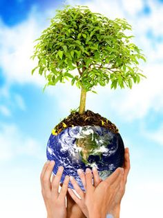 Earth day is celebrated on 22 April and a really good way of saying thank you to Mother Earth for sustaining us is to plant a tree. Conservação Do Solo, Love The Earth, Poster S, We Are The World, Save The Planet, Earth Day, Go Green, Trees To Plant, Mother Earth