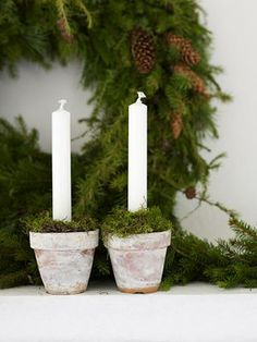 candles in small pots with moss