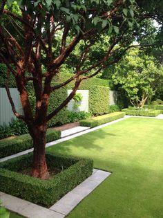 modern garden design Garden Design Home & Garden Store Backyard Garden Landscape, Small Backyard Landscaping, Garden Landscape Design, Modern Landscaping, Back Gardens, Outdoor Gardens, Landscaping Around Trees, Home And Garden Store, Modern Garden Design