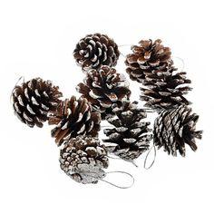 Foxnovo® 9 pcs/set Christmas Tree Decorative Natural Pinecone Pine Nut Christmas Decoration (Silver) Foxnovo http://www.amazon.co.uk/dp/B00GUE2SPA/ref=cm_sw_r_pi_dp_wCxiub190NC6Y