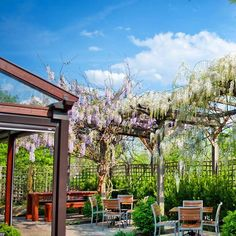 Have a wonderful date night at Late Harvest Kitchen  Late Harvest Kitchen is a great spot to take your loved one for a dinner date with its upscale American specialties craft cocktails and spectacular outdoor seating with a fire pit fountain and stunning ivy. Their offerings change seasonally but the mainstays like the Pork chop (served with baked beans vinegar peppers bacon marmalade and house kraut) and Rabbit biscuits and gravy (topped with baby carrots and Shiitake mushrooms) are enough…