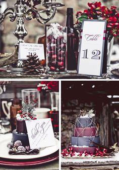 Lovely winter themed wedding shoot.