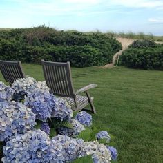 Perfect Sunday morning spot #sunday #hydrangeas #beach #coast #quiet #newengland #nantucket #relax #sit  #thefullerview