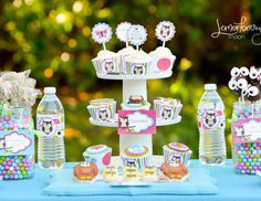Owl Birthday Party  19 HD Images