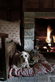 Humans arent the only ones who really enjoy a warm and cozy cuddle by the fireplace. Our dogs love it too! Humans arent the only ones who really enjoy a warm and cozy cuddle by the fireplace. Our dogs love it too! Vitrine Design, Warm Blankets, Cozy Cottage, Cottage Living, Cozy Living, Cabins In The Woods, Hygge, Country Life, Country Living