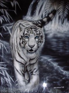 White Bengal Tiger by mavensupreme