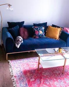 Blue Velvet Sofa Living Room, Navy Blue Velvet Sofa, Navy Blue Couches, Blush Living Room, Navy Couch, Blue Sofas, Bohemian Living Rooms, My Living Room, Cute Apartment