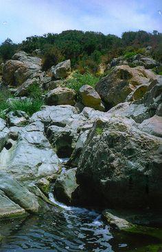 Los Peñasquitos Canyon Preserve!