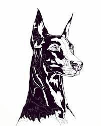 57 Trendy Ideas For Illustration Art Drawing Sketches Doodles Tattoos Design Art Drawing, Illustration Art Drawing, Art Drawings Sketches, Animal Drawings, Drawing Art, Drawing Animals, Drawing Ideas, Illustrations, Pictures To Draw