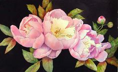 My Garden Peonies - Watercolor   ARTchat - Porcelain Art Plus (formerly Chatty Teachers & Artists)