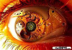 20 Beautiful Macro Photos of the Human Eye Fotografia Macro, Crazy Eyes, Look Into My Eyes, Magic Eyes, Human Eye, Eye Art, All About Eyes, Cool Eyes, Photo Manipulation