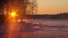 La Suède sauvage vous attend ! - Actualités météo - MétéoCity