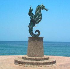 Puerto Vallarta Seahorse