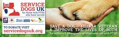 Service Dogs UK - helping save lives