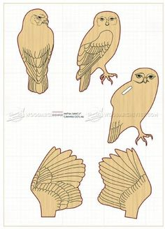#1650 Carving Owl - Wood Carving Patterns - Wood Carving