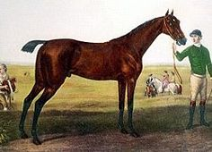 ***HEROD***1 of the 3 foundation sires of the modern Thoroughbred racehorse, along with Matchem and Eclipse. Herod was the foundation sire responsible for keeping the Byerley Turk sire-line alive. HEROD( Tartar/Cypron)/Rachel>HIGHFLYER/ JEWEL>Sourcrout/Whirligig mare>Sourcrout mare/Messenger>MAMBRINO