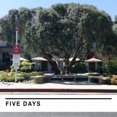 Can you handle it? Only five more days! #APUBound