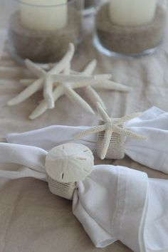 beach treasures for the table - sand dollars & starfish