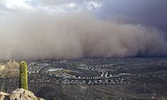 07/19/2011 - Day the sky turned brown: 3,000ft high dust cloud rolls across Arizona AGAIN - Arizona was hit by its second giant dust storm in two weeks yesterday, turning the sky brown, delaying flights and causing mayhem for motorists.