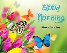 Free Good Morning Images With Flowers