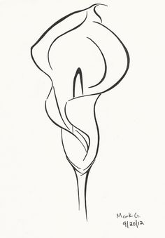 Image result for line drawing of calla lily