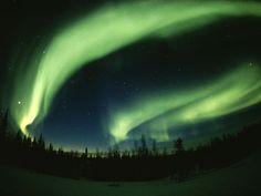 Life in Color: Green, Green Pictures -- National Geographic