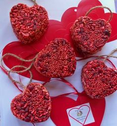 Cute bird treats - heart shapes or other cookie cutter shapes