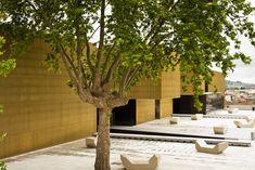 Plataforma das Artes e da Criatividade,© João Morgado Black Building, Plants, Creativity, Wedge, Art, Flora, Planters