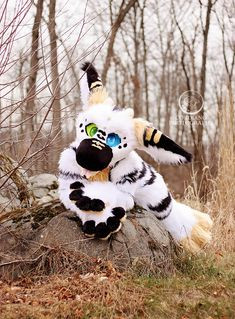 Cosplay Fursuit Photography. Piston, Dutch Angel Dragon, having an adorable costume outdoor photo session.