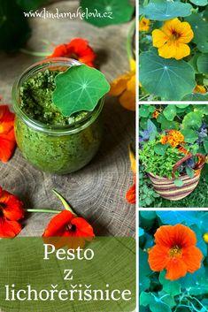 Nature, Plants, Food, Naturaleza, Essen, Meals, Plant, Nature Illustration, Off Grid
