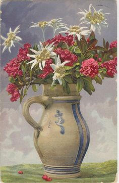 still life on old postcard, 1911