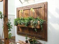 fotos de jardim vertical para varanda